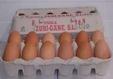 huevo-fresco-supergrande-xxl