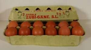 huevos-frescos-mediano