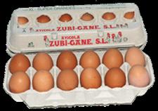 huevo-fresco-grande-xxl
