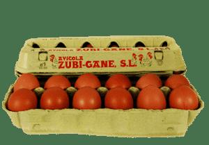 huevos-frescos-mediano-m