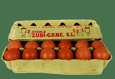 huevos medianos avicola zubigane
